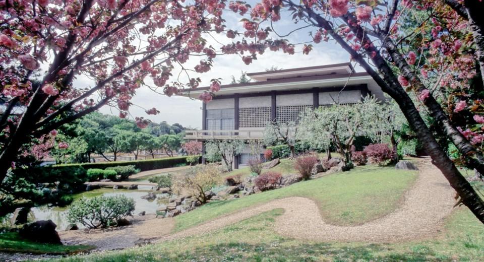 Istituto giapponese di cultura roma zero for Oggettistica giapponese milano