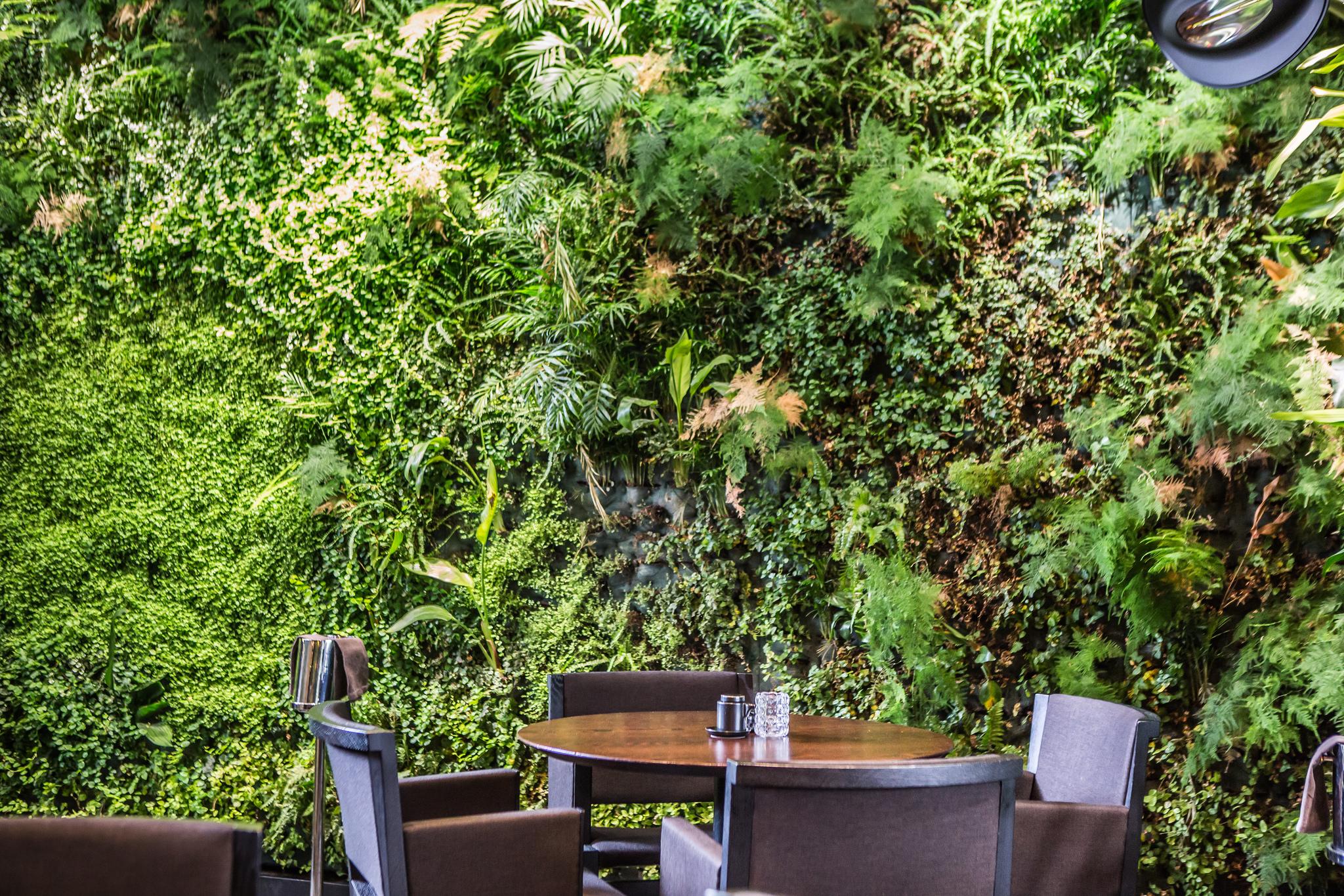 Il giardino verticale del Sushi B