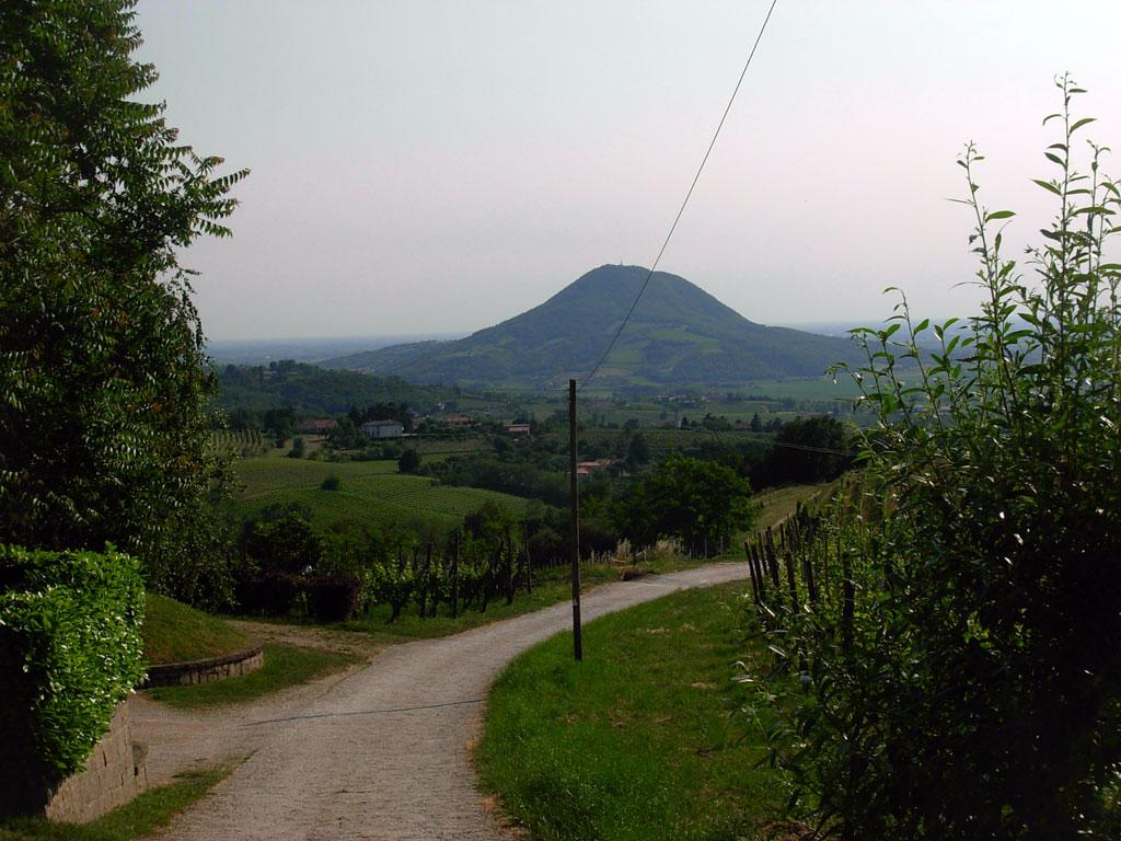 La stradina d'arrivo al Monte delle Forche e i Colli Euganei sullo sfondo -  © http://www.laterratrema.org/