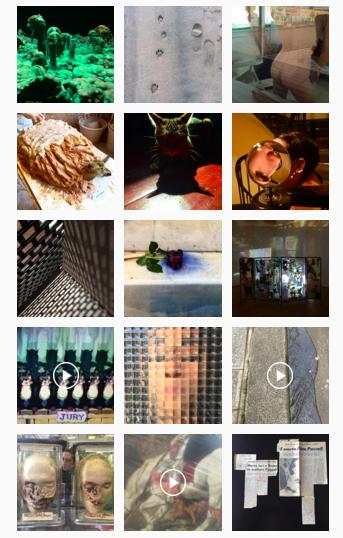 Uno screenshot della pagina Instagram @nicovascellari