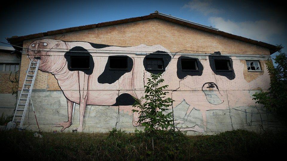 sagra street art