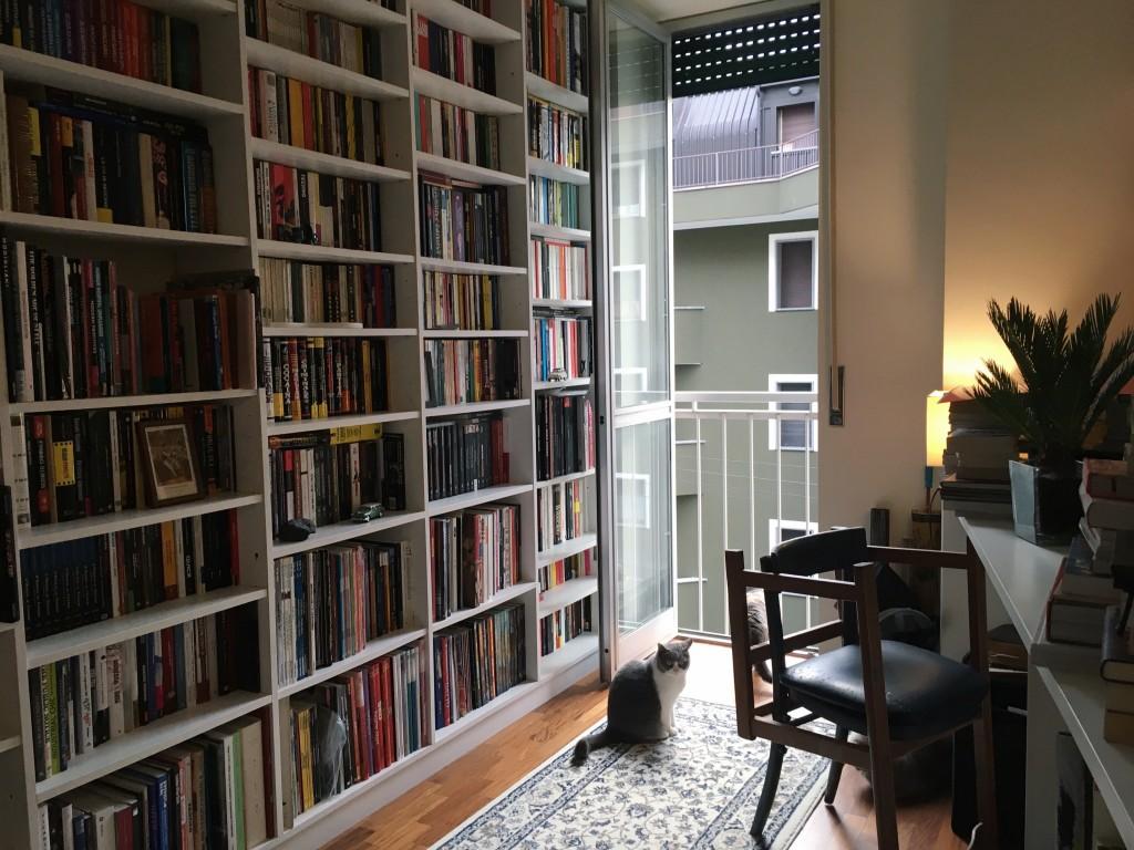 Una parete di libri di casa di Albert e un'altra gatta