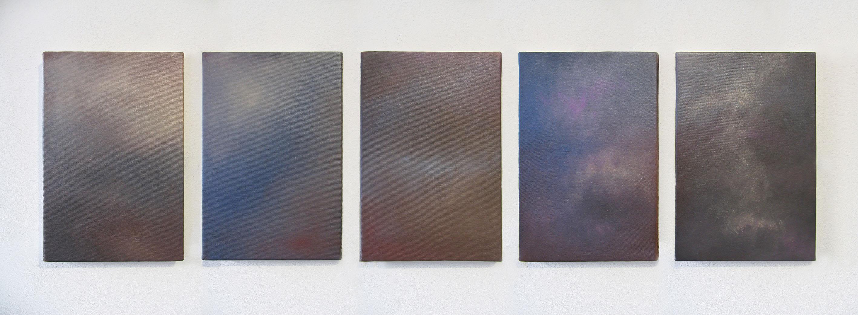 TRUCCO 2014 Ombretti su tela, 30 x 20 cm ognuno, cinque giorni
