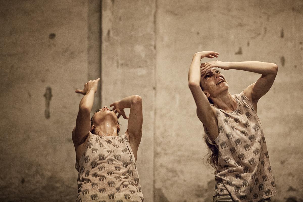 Bolero Effect. Foto di Ilaria Scarpa