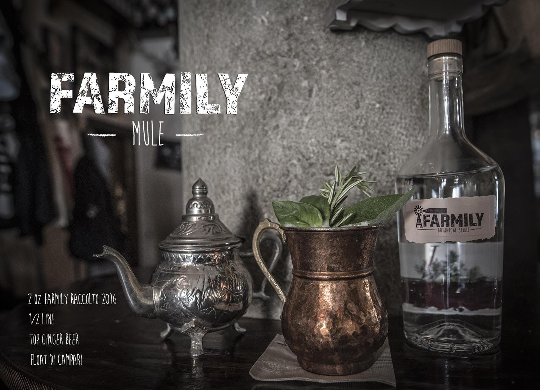 farmily-mule-mag-cocktail-agosto-milano