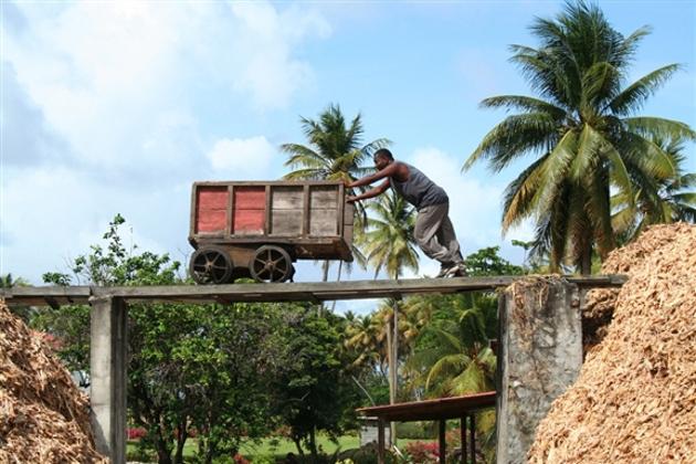 La distilleria artigianale River Antoine di Grenada.