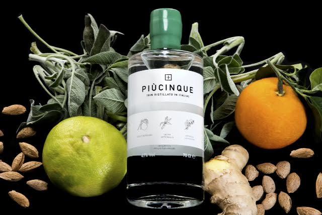Gin Piùcinque e  le sue botaniche