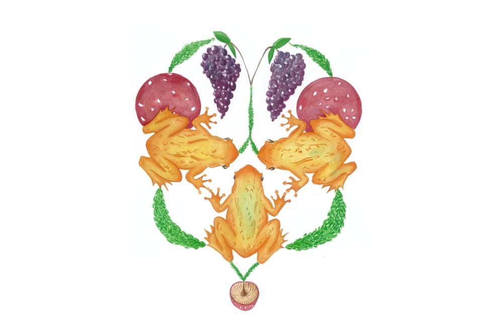 L'illustrazione di Bianca Maria Fiorentino del capitolo del menu «Che venga la pioggia (I giardini del secolo a venire, 2016)»