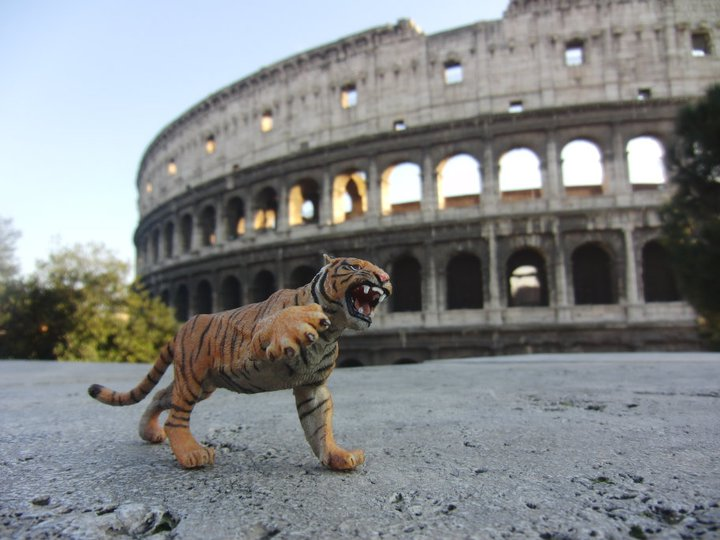 L'animale guida di Tiger & Woods in posa al Colosseo.