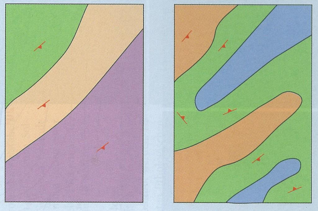 Carte Mutaforma: Card 2