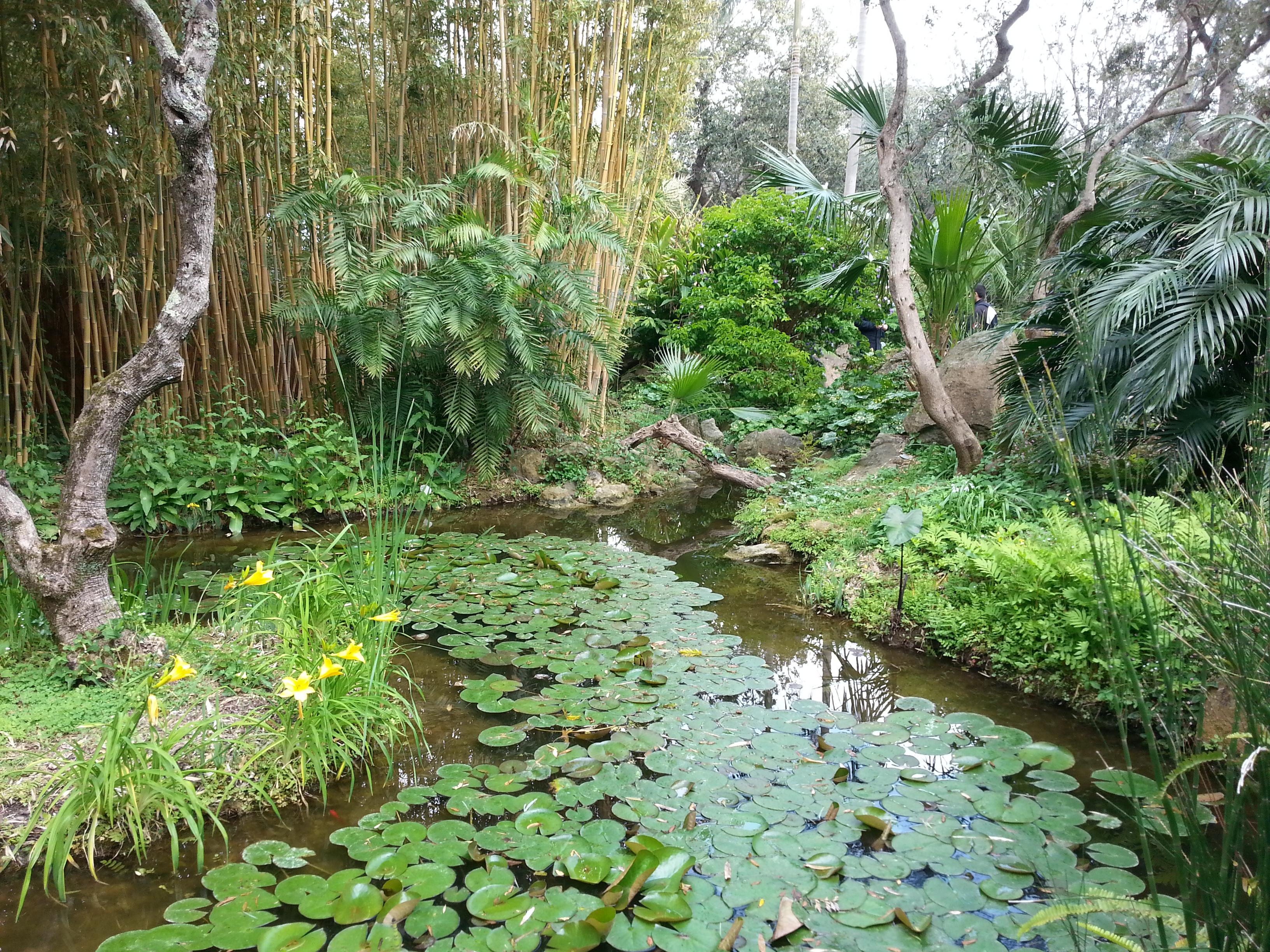 I giardini segreti di bologna riaprono al pubblico con for Programma progettazione giardini