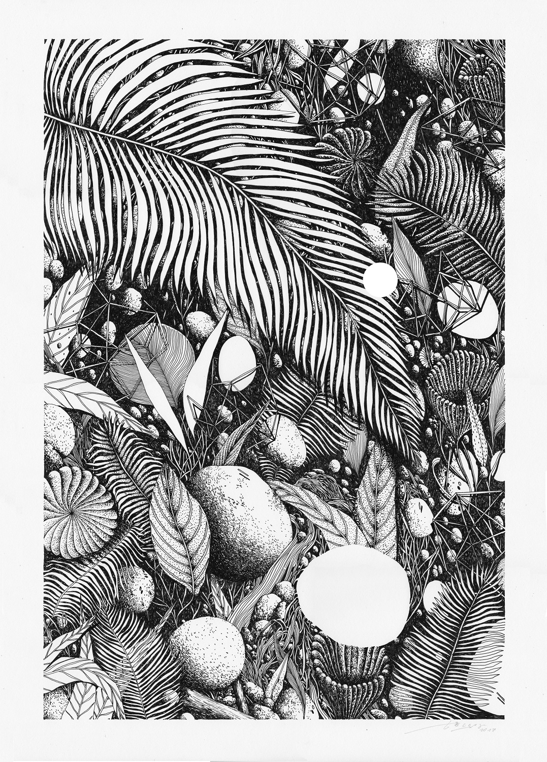 MAGMA gallery_Tellas_Tropico 6 -ink on paper 50x70 cm
