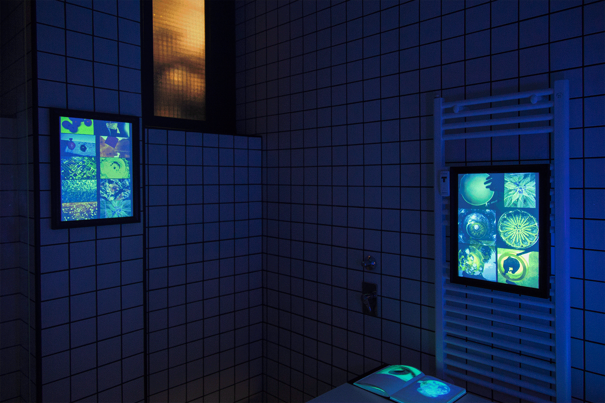 – RETINA Installation Views @ Gluqbar (toilet): Giorgio Di Noto