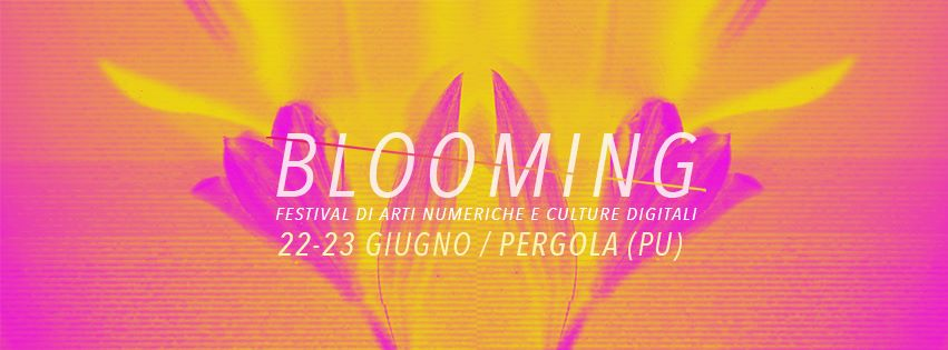 blooming-festival